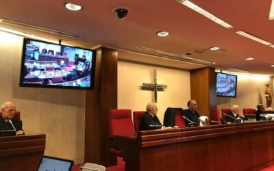 Nota i roda de premsa de la Comissió Permanent de la CEE